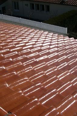 artisan laffont d moussage et nettoyage de toiture 40 mont de marsan. Black Bedroom Furniture Sets. Home Design Ideas